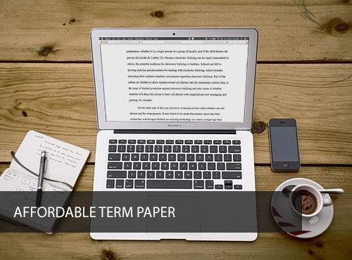 Affordable Term Paper